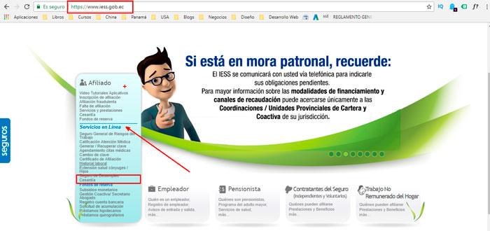 Interfaz Pagina Web IESS